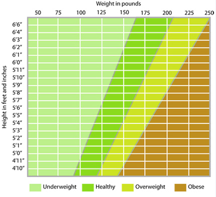 Do You Have A Bmi 36 Weight Loss Information